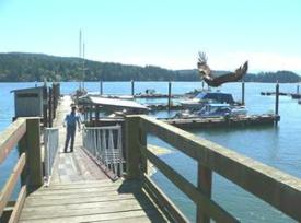 Look closely at the middle right of this photo to see the eagle flying in to snatch a treat from D&D Fishing Charters.
